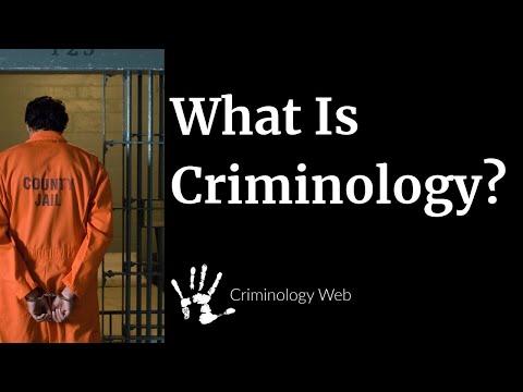 what-is-criminology?-a-crash-course