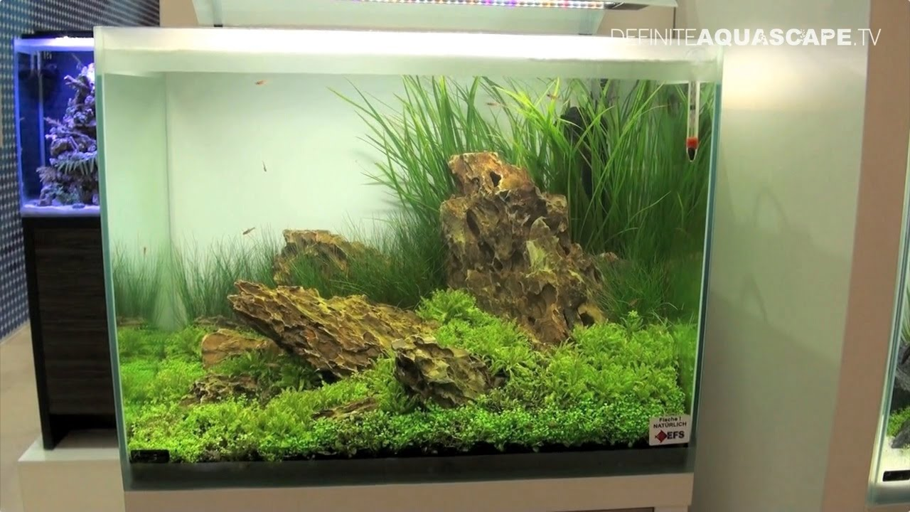 Aquarium Ideas From Interzoo 2014 Pt 40 Fluval Fresh