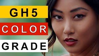Easy Color Grading For GH5 Vlog Footage   V-log Luts For Panasonic Gh5