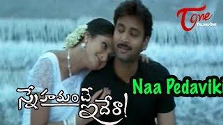 Snehamante Idera Songs - Naa Pedaviki - Sumanth - Pratyusha