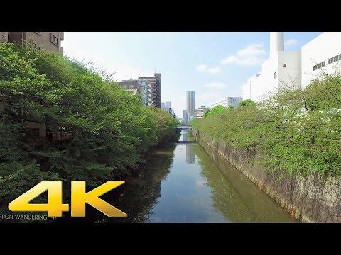 Meguro to Nakameguro, Tokyo on foot - Long Take【東京・目黒/中目黒】 4K