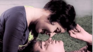 Dil Tera Deewana Hai Sanam, Song in Colour