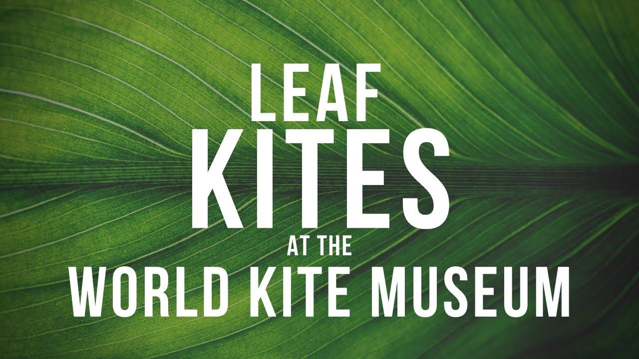 Leaf Kites at the World Kite Museum