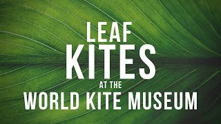 Leaf Kites at the World Kite Museum