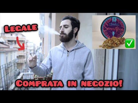 PROVIAMO LA PRIMA MARIJUANA LEGALE IN ITALIA! [VIDEO REACTION]