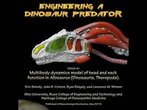 Engineering a dinosaur predator - Allosaurus feeding mechanics