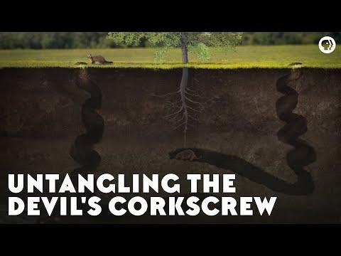Untangling the Devil's Corkscrew