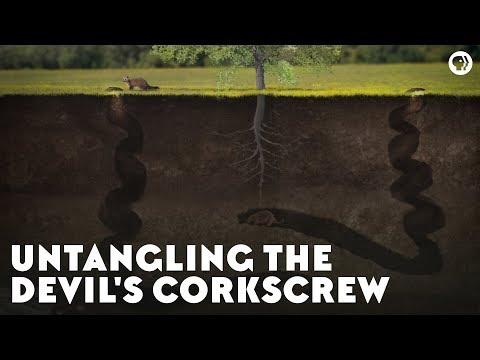 Untangling the Devil