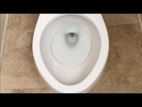 Recurring Toilet Ring - Top 3 Solutions tested - Problem Solved