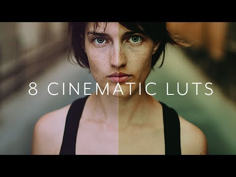 8 Cinematic LUTs Pack By Mathieu Stern ( ZOOLOGY)