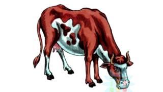 Нарисуй картинку тема животные учимся рисовать как рисовать животных Овечка Свинка Корова