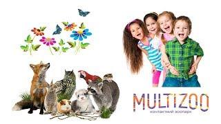 Зоопарк в Житомире | MULTIZOO