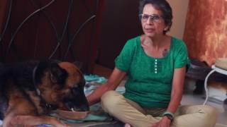Shotgun - A Short Movie on Police Dog Adoption
