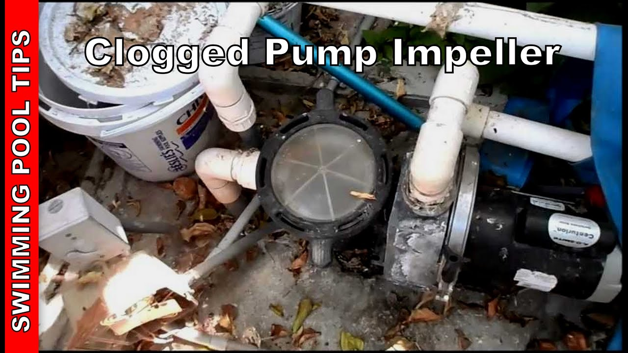 well pump not priming animal cell blank diagram to fill in clogged impeller pool part 4 youtube