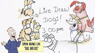 LIVE DRAW: DOGS! - Simon's Cat