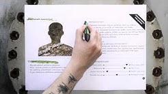 Asiakasprofiili | Passi & Ripatti - Design Notebook