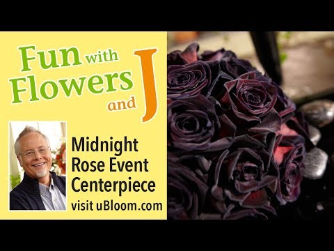 Fun with Midnight Roses using Black Flowers and Foliages to create a dramatic centerpiece!