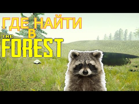 ГДЕ НАЙТИ В THE FOREST | ЕНОТ