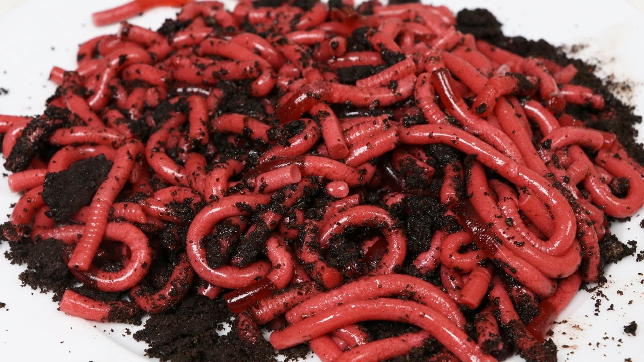 How To Make Jello Gummy Worms Fun Halloween Dessert