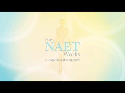 How NAET Works  -  A Hypothetical Perspective
