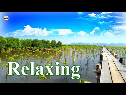 Relaxing Nature – Angkor Wat Tours – Tours of Cambodia – Phnom Penh Travel