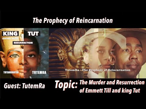 Download TutemRa: The Reincarnation of Emmett Till & King Tut Part 2