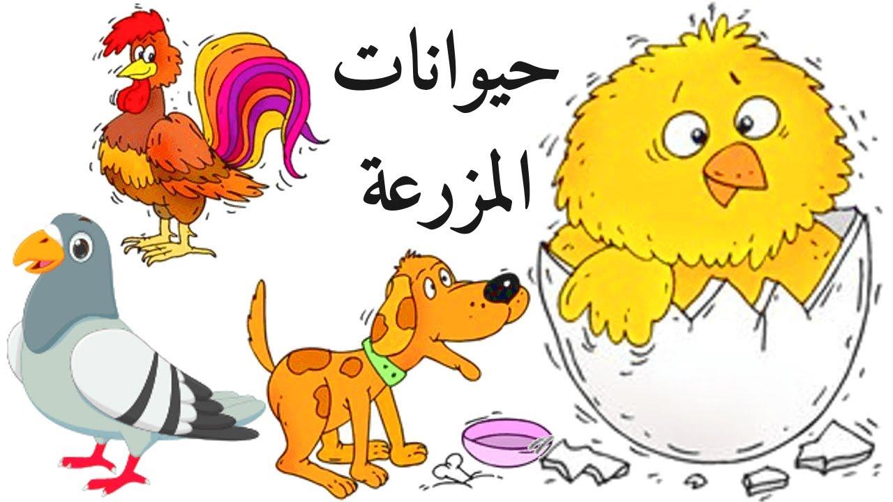تعليم حيوانات المزرعه للاطفال | في المزرعة حيوانات | أسماء حيوانات المزرعة بالعربية