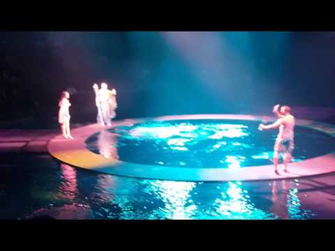 Le Reve show, Wynn hotel, Las Vegas