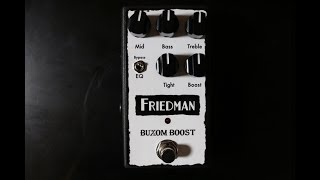 Friedman Buxom Boost Pedal Video Demo by Shawn Tubbs