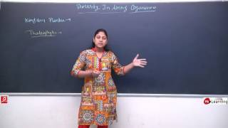 Diversity In Living Organisms Kingdom Plantae Classification 05 For Class 9th NTSE