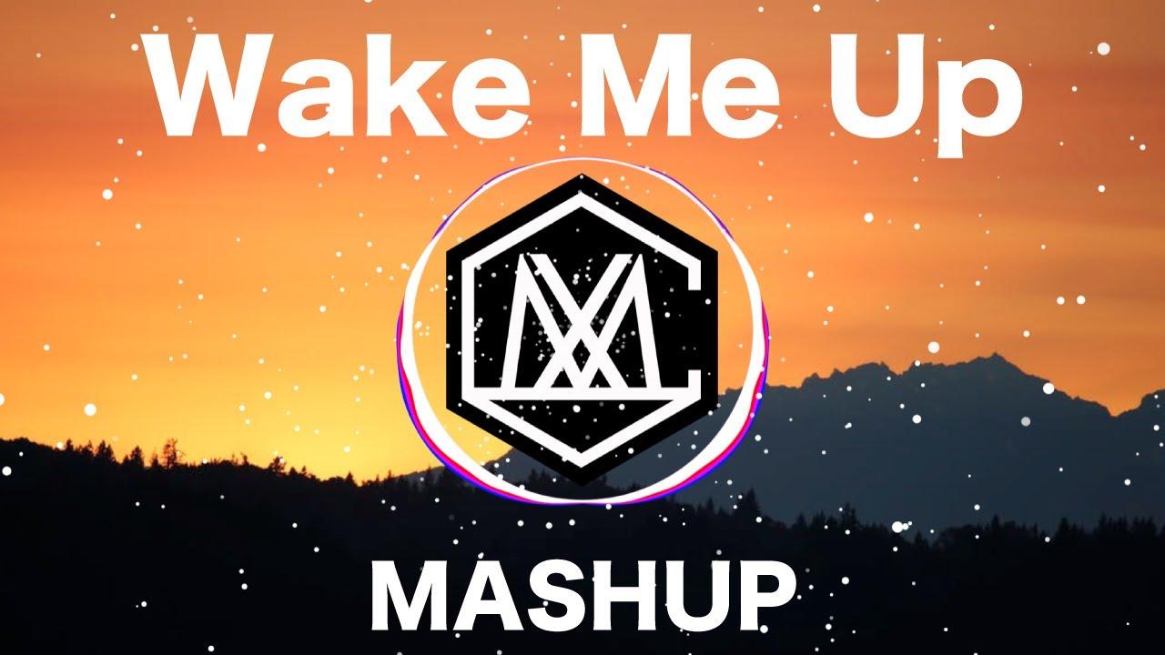 Wake Me Up / Avicii  ( iamSHUM Mashup)