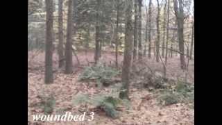 "Aalto Just Weimaraner ""kyle"" Blood Tracking 600m / 44 Hours Nov. 2013"
