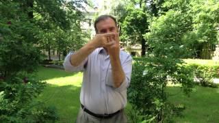 Русский жестовый язык. История жеста