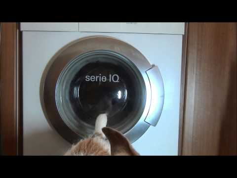 Siemens Serie IQ 1430 washer : Cotton 40'c half load rinse plus (full cycle)