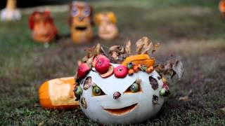 Halloween pumpkin 13 - Free HD stock footage