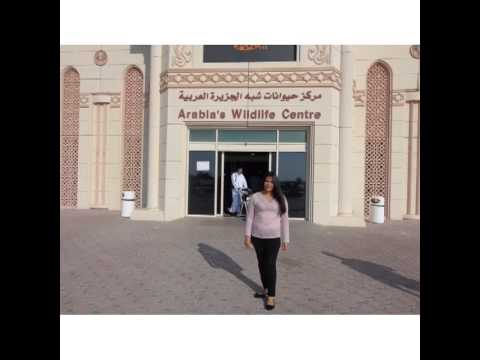 SHARJAH WILDLIFE CENTER EID AL ADHA