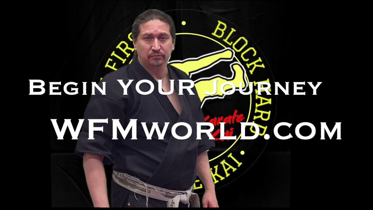 Karate Kai: Intro to Fitness Level