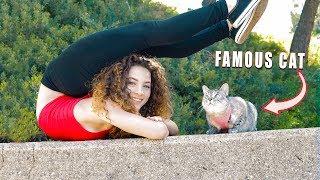 I GOT A CAT!?!? (Nala Cat)