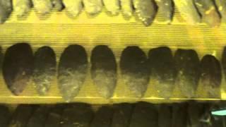 330 Coshocton Adena cache blades