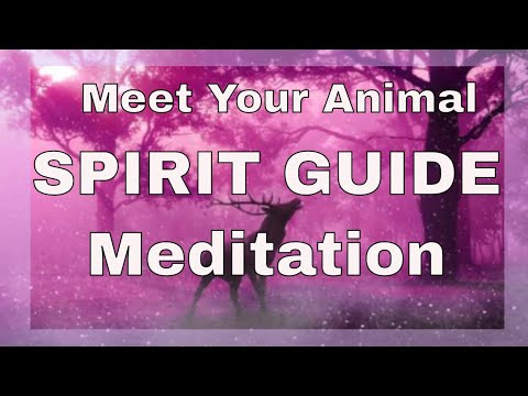Meet Your Animal Spirit Guide ~ A Guided Meditation ~ Sonia Parker