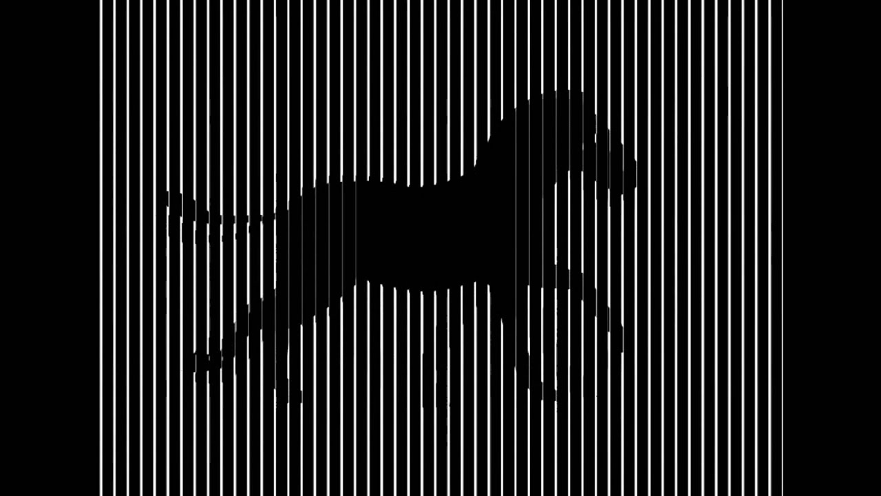 Animated optical illusions print pictures to pin on for Animated optical illusions template