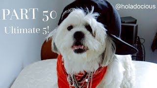 Hood Animal Voiceovers Part 50: ULTIMATE 5!!