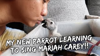 MY BABY PARROT SINGS MARIAH CAREY! | Vlog #222