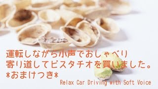 I drove my car and had a chat with soft voice. I stopped at a conve...