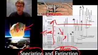 unit 2 review speciation