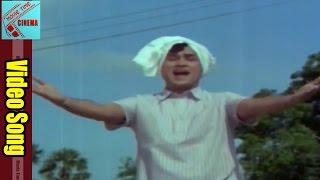 Maa Chenu Bangaram Video Song || Datta Putrudu  Movie || ANR, Vaani Sri