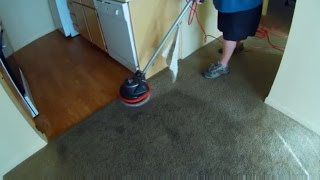1,000 Subscribers! Oreck Orbiter Trashed Carpet Cleaning