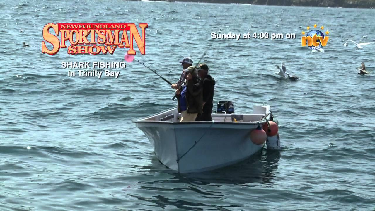 Promo shark fishing in trinity bay youtube for Trinity bay fishing