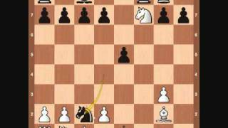 Chess Openings: Traxler Counter Attack