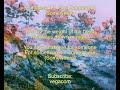 Gus Dapperton x Surf Mesa- Somewhere [Lyrics]